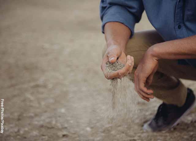 Foto de una persona con arena en sus manos