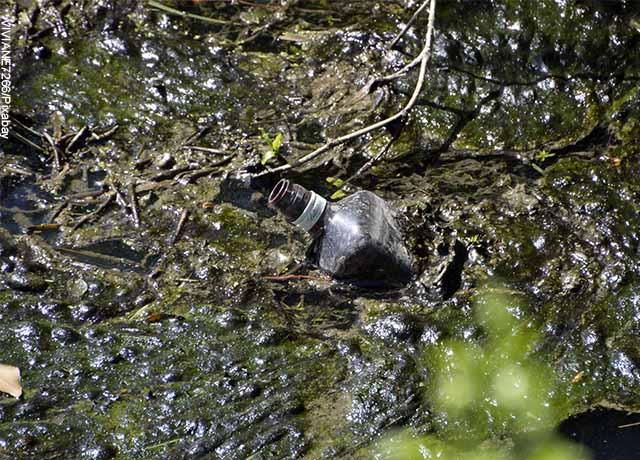 Foto de una botella en el agua sucia