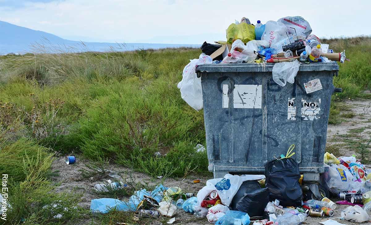 Foto de una canasta con desechos que muestra lo que es soñar con basura