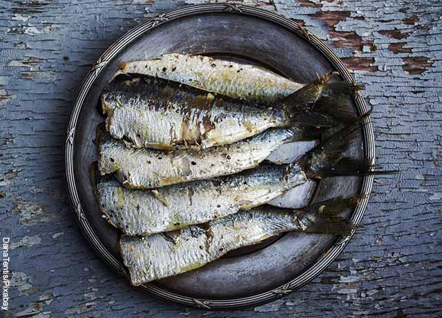 Foto de un plato con varios trozos de pescado que muestran lo que es soñar con sal