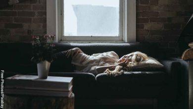 Foto de una mujer dormida en el sofá que revela cómo saber el significado de un sueño
