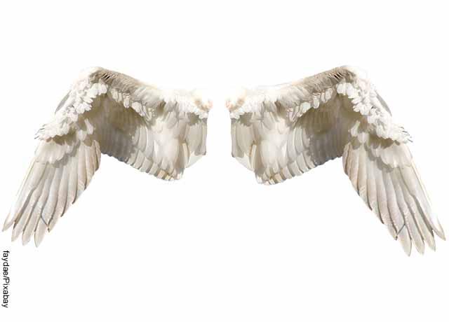 Foto de las alas de un ángel