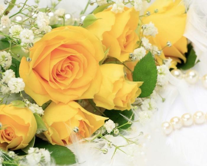 Foto de rosas amarillas