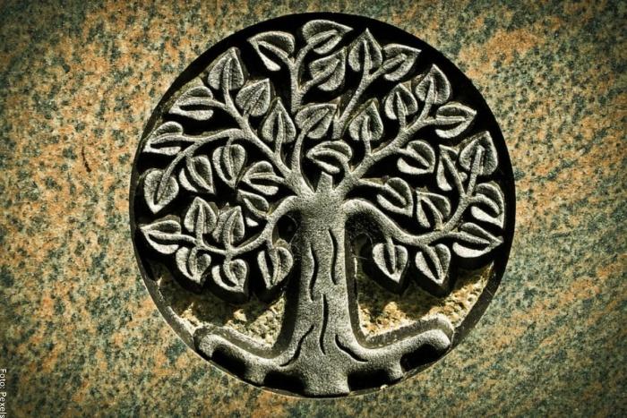 Foto del árbol de la vida en religión
