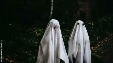 ¿Te gusta el cine de terror? Empresa pagará por ver sus películas