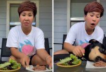 """Tiktoker intentó """"demostrar"""" que un perro puede comer vegetariano"""
