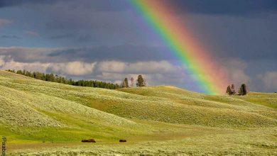 Foto de un arcoíris en el campo que revela lo que es soñar con arcoíris